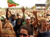 """Recomandare de weekend: Distractie """"ca in codru"""" la SummerJam Fest"""