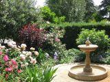 Plante ideale pentru o gradina de trandafiri