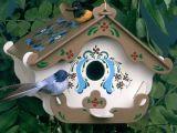 Invata sa construiesti singur o casuta pentru pasari in gradina