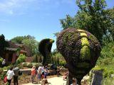 Cele mai frumoase gradini: Gradina Botanica din Atlanta, SUA