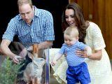 Au facut, in sfarsit, anuntul! Ducesa Kate va naste...