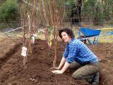 Toamna, sezonul ideal pentru plantarea pomilor fructiferi. Ce trebuie sa stii