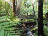 Gradina Botanica Regala din Melbourne, coltul de rai al Australiei