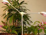 Sistemul de iluminat pentru plantele de interior