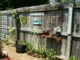 5 idei ingenioase pentru decorarea gardului