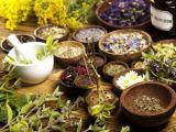 Planta curativa a zodiei tale! Ce trebuie sa ai in casa pentru a te vindeca rapid de boli