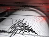 Romania, zguduita de inca un cutremur vineri noapte