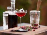 Cocktail Red Rudolph - deliciul petrecerilor de Craciun