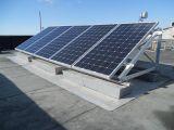Panourile fotovoltaice – tot ce trebuie sa stii despre ele