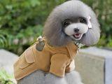 Pet Fashion: Cum iti imbraci animalul de companie in functie de anotimp! Iata care sunt trendurile anului 2017