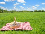 Petreci Pastele in Bucuresti? Iata unde poti iesi la o plimbare in aer liber
