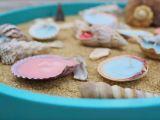 Lumanari din cochilii de scoici, ideale pentru decorul de vara! Invata sa le creezi acasa VIDEO