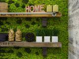 Transforma-ti casa intr-o padure cu ajutorul peretilor vii