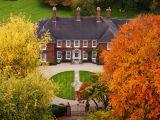 Calendarul gradinarului in luna octombrie! Activitati pe care sa nu le ratezi