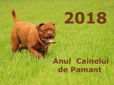 2018, Anul Cainelui de Pamant! Ce-ti rezerva astrele in functie de zodie