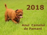 2018, Anul Cainelui de Pamant