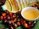 Ce este uleiul de palmier si cum se foloseste la gatit