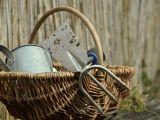 Pregateste uneltele de gradinarit pentru iarna! Ce trebuie sa stii