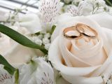 Elvis Presley si Marilyn Monroe te casatoresc de Valentine's Day