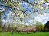 Minivacanta de 1 mai! Cum sa te distrezi in Bucuresti