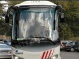 WinnerBus, autocare pentru Romania