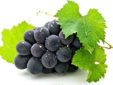Fructe delicioase care se pot dezvolta in ghivece