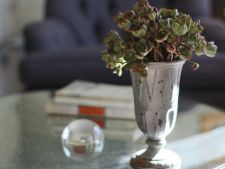 How to do the a   of herbal bouquet juicy that stand no water