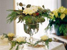 Decoratiuni cu plante pentru cel mai frumos Craciun acasa!
