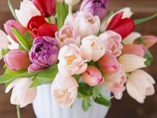 5 flowers perfect romantic for  's Valentine's Day