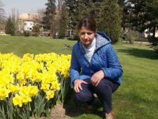 Expertul Acasa.ro, Florentina Platarescu: Focul bacterian, dusmanul de temut al pomilor