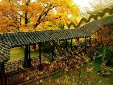 Cele mai frumoase gradini: Jichang Garden, pasarea Phoenix a Chinei