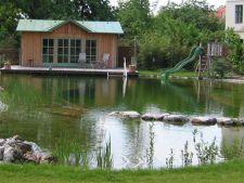 5 pasi simpli pentru a amenaja o  piscina naturala cu bani putini