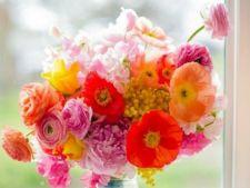 Ce flori se potrivesc fiecarei zodii si de ce. Vei ramane surprins