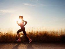 Exercitiile cardio sunt o corvoada? Cum le transformi intr-o adevarata placere