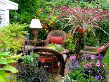 5 plant that loves  , water suitable for gardens with the ground wet