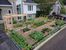 Amenajeaza cu stil gradina de legume