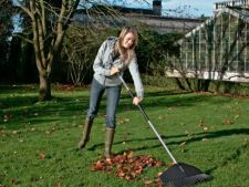 4 the works on emergencies has to make them the fall in your garden