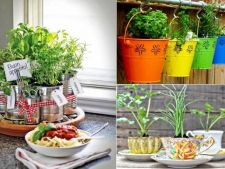 7 cute pots for spices