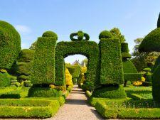 Cele mai frumoase gradini: Levens Hall din Marea Britanie, spectacolul verde al arbustilor ornamentali