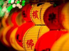Intram in Anul Nou chinezesc. Afla ce schimbari majore aduce Anul Caprei de lemn