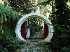 Gradina Las Pozas, un colt de rai in jungla mexicana