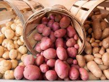 Cartoful - medicamentul din camara ta. Afla de ce boli te poate scapa!