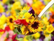O gradina pentru bucatari: iata ce flori pot fi folosite la gatit