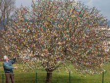 """Asa arata cel mai frumos """"pom de Paste"""". E plin cu mii de oua colorate!"""