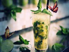5 cocktailuri pentru soferi. Bei si pleci la drum
