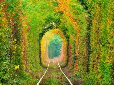 Tunelul iubirii, unul dintre cele mai romantice locuri din tara noastra