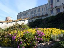 Alcatraz, un loc plin de mister! Iata ce gradini uimitoare ascunde celebra fortareata