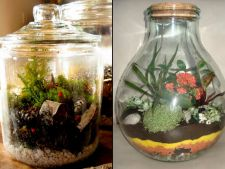 """How to a mini scenery from """"  garden a glass"""