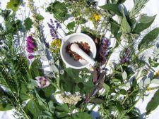 Tratamente naturiste benefice pentru fiecare zodie in parte