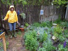 7 things that you can do   in Garden when raining